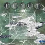 Pünct, Gipf Project, doos