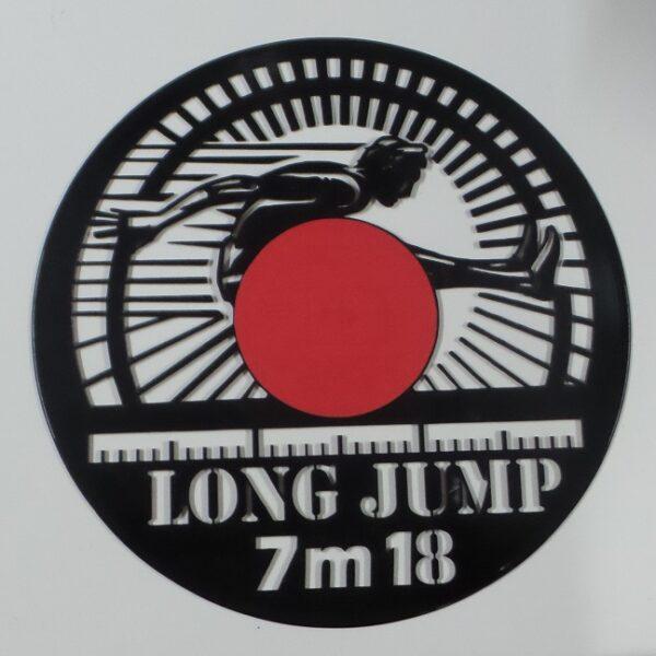 vinyl-longjump